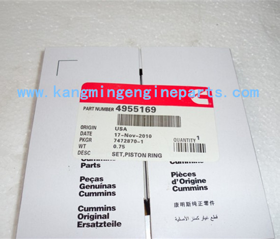 DCEC engine parts 4955169 piston ring
