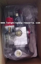 chongqing plant genuine fuel pump 3070123EG13 spare parts